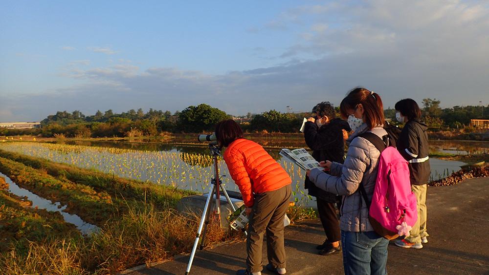 沖縄ネイチャーオフィス朝の野鳥観察会