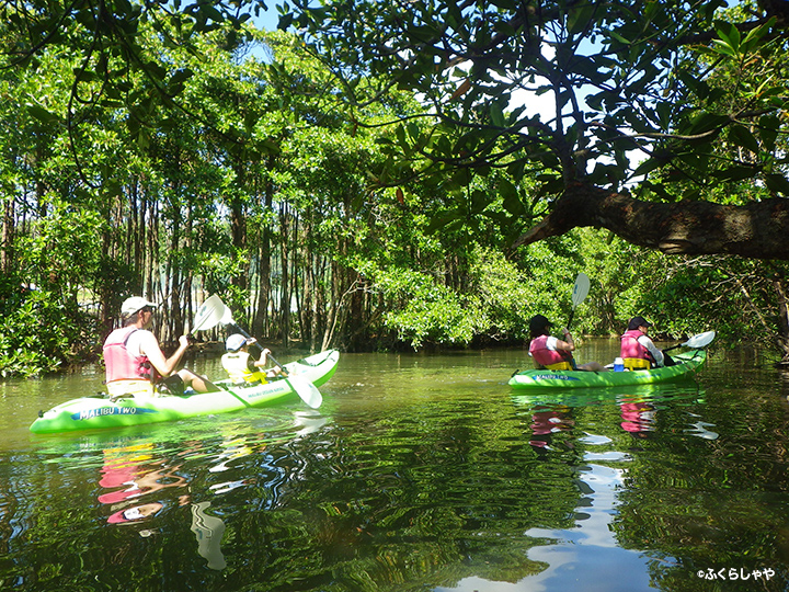 Mangrove Canoe Experience (in Fukurasha)