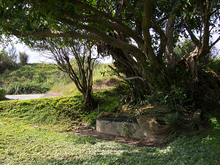 名古川之泉